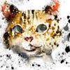 nomeko's Profile Picture