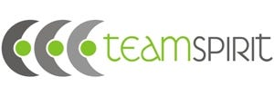 Logo Teamspirit grey-green 2.jpg