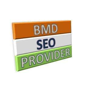 Profile image of BMDseoprovider