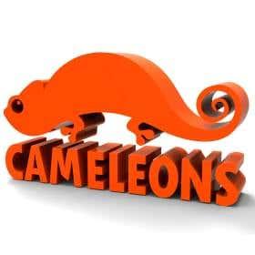 Cameleons - Egypt