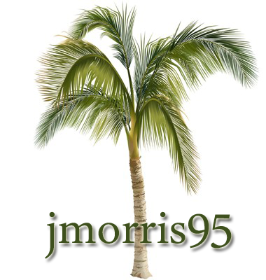 Profile image of jmorris95